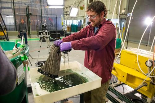 Esponja reutilizável pode revolucionar a limpeza de vazamentos de óleo e diesel