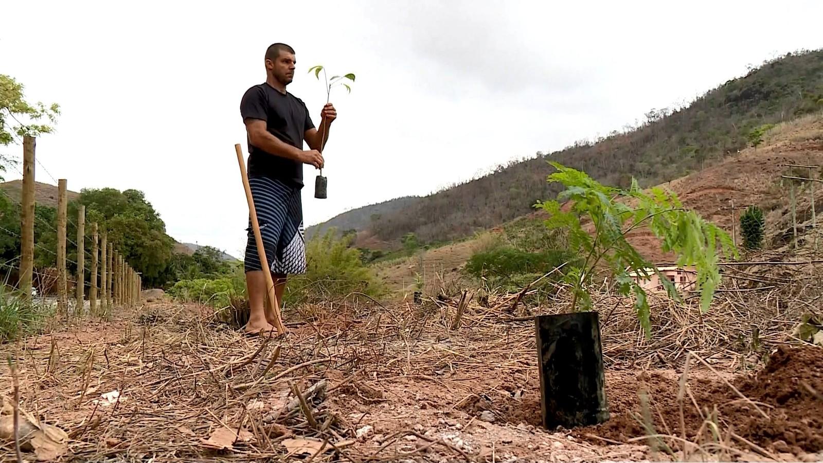 Projeto quer plantar mais de 23 mil mudas de árvores até 2020 em Santa Teresa, ES